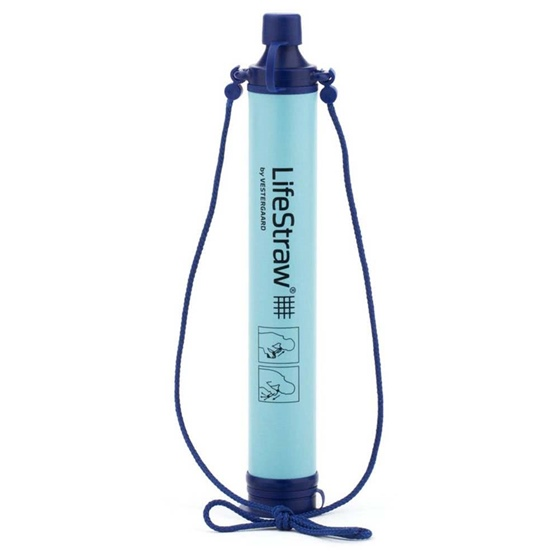 EarthEasy Lifestraw Personal H2O Filter
